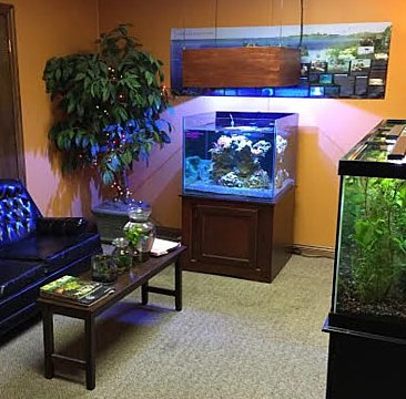 premiere aquarium and fish store in the midwest